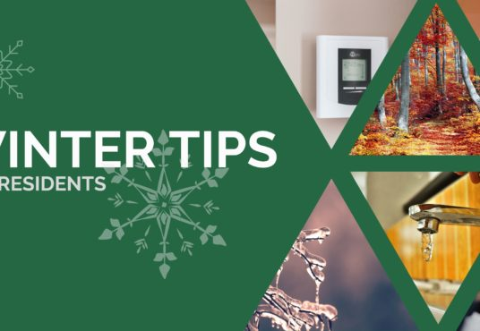 winter tips graphic